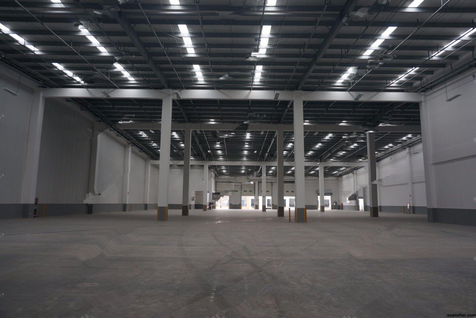 出租天津武清区86175平新建高台仓库