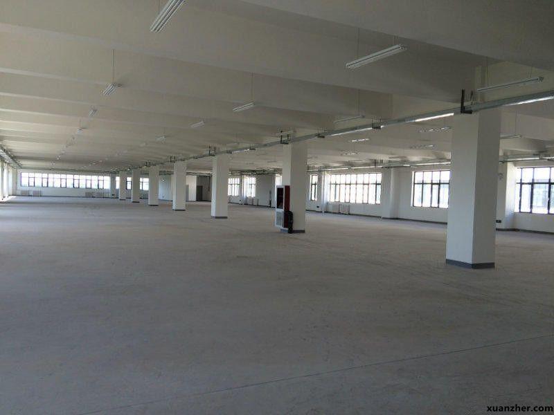 西青精武学府高新区厂房800-2500平米出租